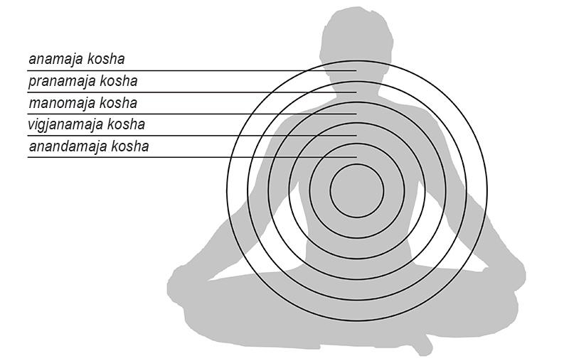 Sika-yoga-krugovii